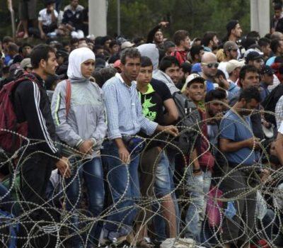 refugés